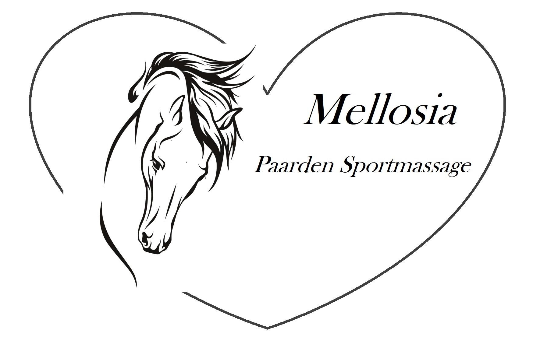 Mellosia Paarden Sportmassage